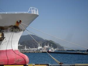 0(写真)焼津港