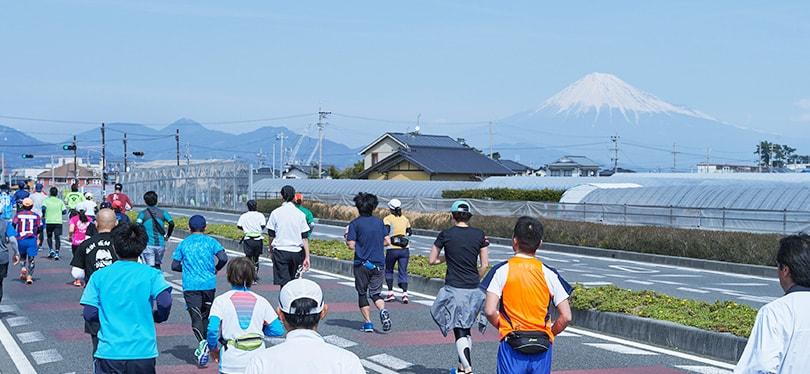 富士山を臨む駿河路を走ります